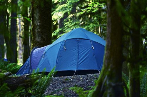 The Best 10 Person Tent
