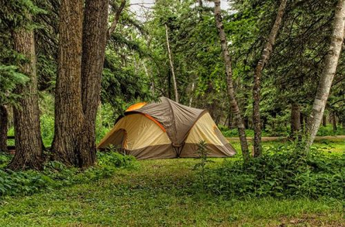 The Best 12 Person Tent