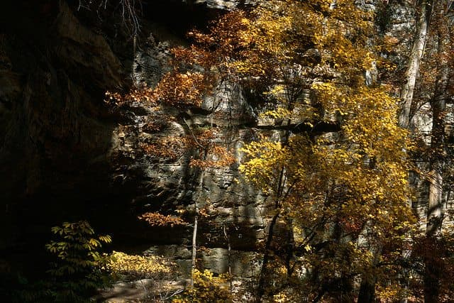 The best red river gorge camping - Natural Bridge Cabin Company Camp Ground