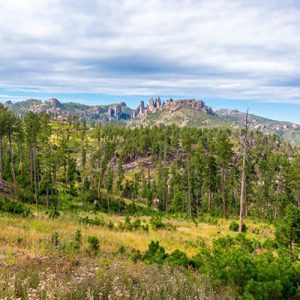 The Best Custer State Park Camping