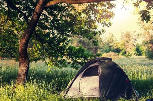 The Best Camping in Florida