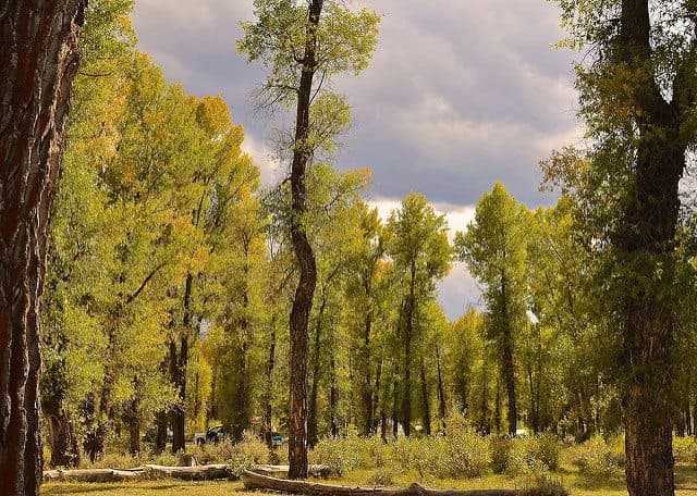 Best Camping in Grand Teton National Park - Gros Ventre