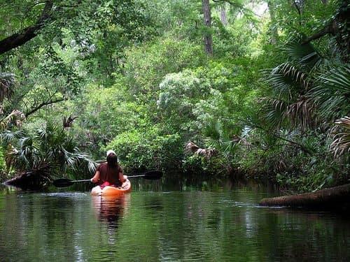 Best Camping in Florida - Juniper Springs