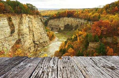 The Best Camping in Letchworth State Park