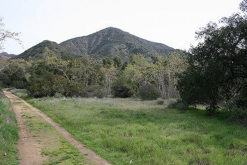 Best Camping in Doheny - Live Oak Grove Campground