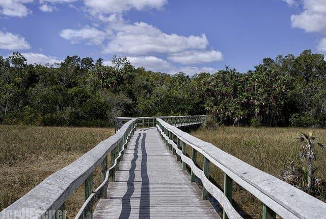 Best Camping in Florida - Mahogany Boardwalk