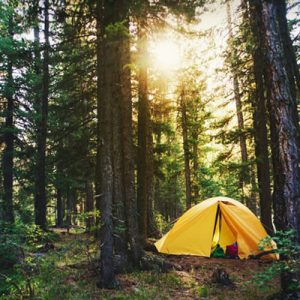 Sustainable Camping: The Definitive Guide