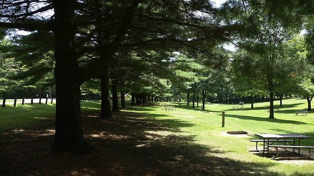 Best Camping in Illinois - White Pines State Park
